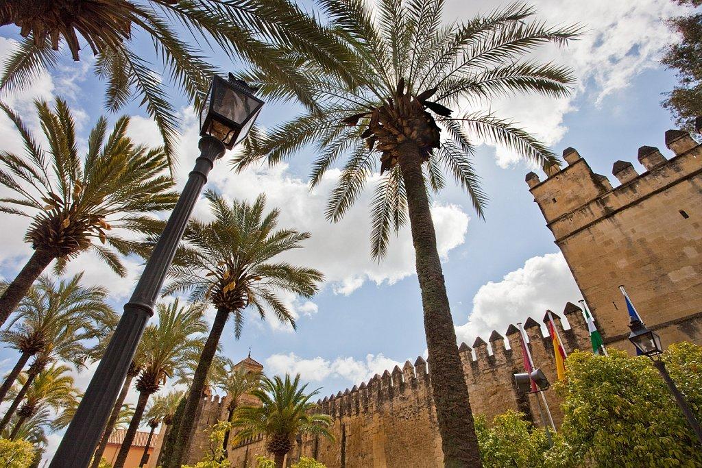 Palms and exterior walls of Alcazar de Los Reyes Christianos in Old Quarter, Cordoba, Spain