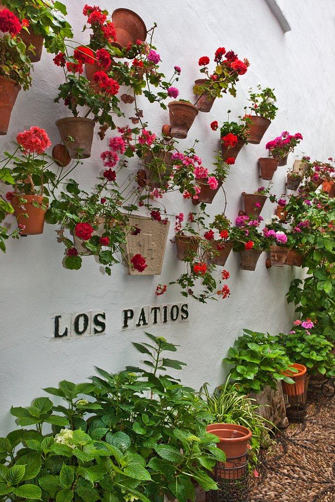 Patio decorated for Cordoba Patio Festival, Festival de los patios Cordobeses, in Cordoba, Spain