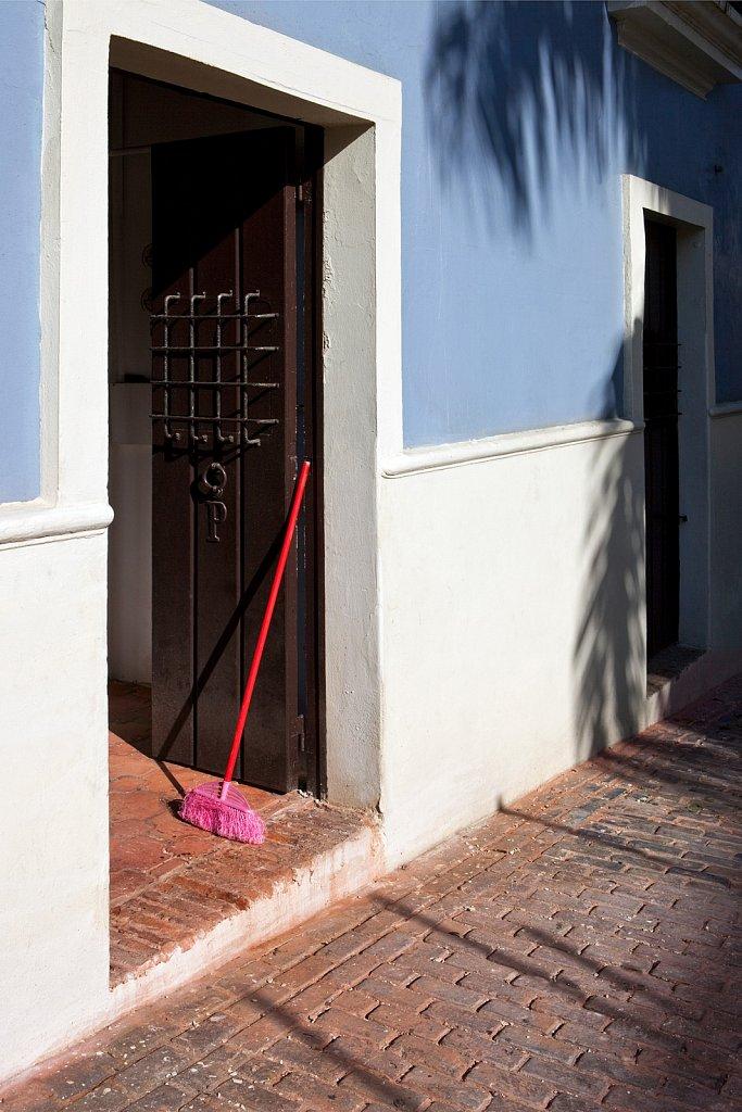 Pink broom in Old San Juan, Puerto Rico