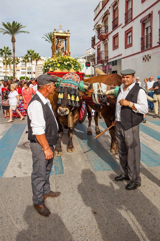 Decorated oxen pull religious icon at Romeria fiesta, Salobrena, Granada, Spain